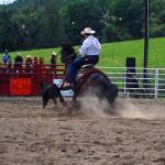 """Calf Roping"" by aliciakelly"