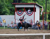 Junior Bull riding at a local rodeo