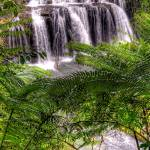 """Wallacha Falls"" by oasisphotographics"
