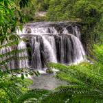"""Wallacha Falls Landscape"" by oasisphotographics"