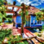 """At Home on Cozumel"" by DigiPix"