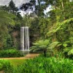 """Milla Milla Falls"" by oasisphotographics"