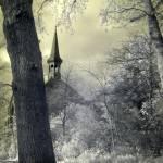 """""""Vondelpark vista"""" by dabi"""
