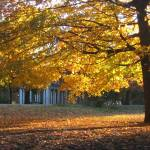 """""""Autumn in Prospect Park"""" by alicia954"""