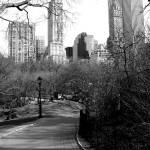 """""""Central Park"""" by megmeg89"""