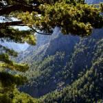 """Samaria Gorge"" by agelakis"