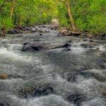 """Big Crystal Creek"" by oasisphotographics"