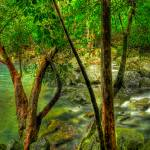 """Bridge Swimming Hole"" by oasisphotographics"