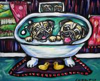 Smiling pugs in bath