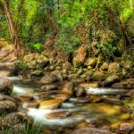 """Josephine Falls Ultra Wide"" by oasisphotographics"
