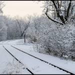 """Morning Snow"" by starrienight"