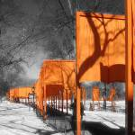 """The Gates, Central Park"" by Manzari"