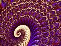 The Unfolding (Purple)