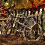 """Bicycle"" by barbarayoungleson"