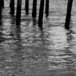 """Pier Pilings"" by rayjacque"