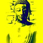 """The Yellow Buddha"" by handheld-films"