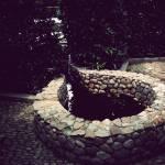 """Garden"" by Actionp4ck"