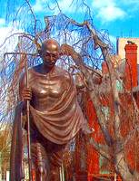 Mahatma Gandhi Statue, Washington DC 3