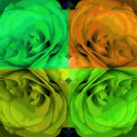 Majid 4x4 Roses orange greens center rotated