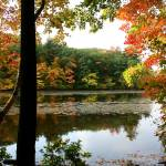 """New England Fall Colors"" by rajhema"