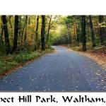 """""""Prospect Hill Park"""" by rajhema"""