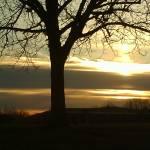 """SUNRISE ON MARCH 3RD"" by suttmueller"