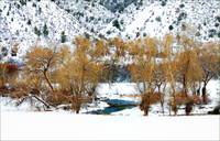 Snowy Elk Creek (west of New Castle, Colorado)...