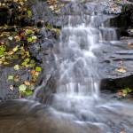 """Waterfall in the woods"" by TonyDoddPhotography"