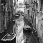 """""""The White Bridge"""" by DonnaCorless"""