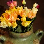 """Vase of Tulips"" by morninglori"