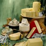 """Cheeses of Denmark / CY108SBL"" by Laperruque"