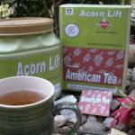 """""""Acorn Lift Tea by Derek Phoenix"""" by derekphoenix"""