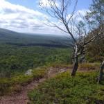 """wilderness landscape"" by dnj_Brian"