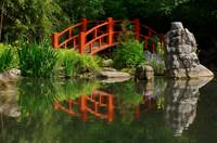 Japanese Garden Reflections