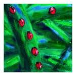 """Ladybugs Poster"" by michaeltodnelsonart"