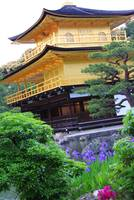Golden Pavilion Temple Kyoto, Japan