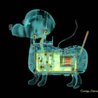 Mechanical Dog Art Prints & Posters by Satre Stuelke