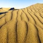"""""""Dunes at Sunrise"""" by jenfu"""