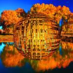 """""""Tree_Pond"""" by kimcarlsberg"""