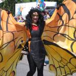 """Fremont Fair Butterfly"" by Photofish7"