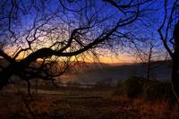 Early Sun in the Chilterns