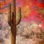 """Desert Fire"" by Cynthia_Burkhardt"