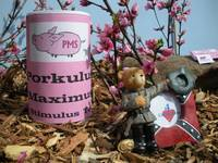 Porkulus Maximus Tea and Confederate Bear