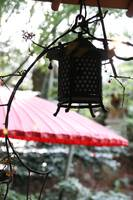 ZEN THOUGHTS - Japanese Lantern
