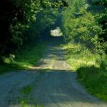"""""""The Road Less Traveled"""" by robspictureit"""