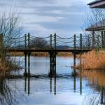 """the footbridge at oxford island"" by eileenmcpics"