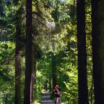 """Tegernsee Trail"" by skystudiobavaria"