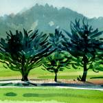 """Fairway Junipers 12x24 HR"" by maiergallery"