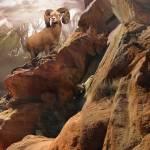 """Rocky Bighorn"" by SteveHunziker"