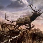 """""""Elk Passage"""" by SteveHunziker"""